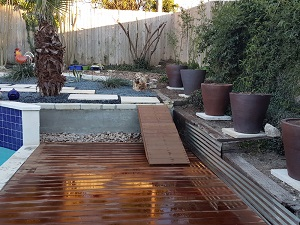 Landscaping and Lawn Care - Cedar Park, TX - Xeriscape Walkway Retainer - YardDoc