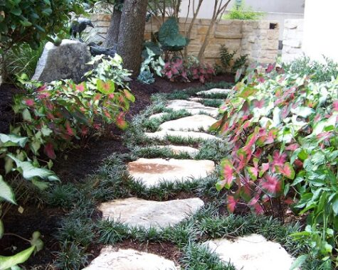 Landscaping Services - Landscape Design Home Services - Austin TX - YardDoc