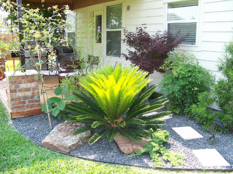 Landscaping Jobs - Landscaping Plants - YardDoc - Austin, TX - Remodel corner with stones, edging, rocks, fern