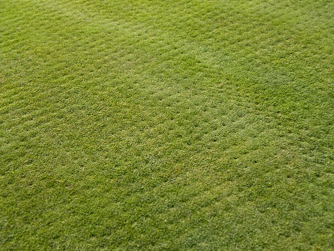 Lawn Aeration - Austin, TX Landscaping Services - YardDoc