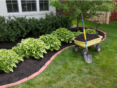 Lawn Care - YardDoc - Bee Cave, TX - Lawn Garden Edging - Garden with topsoil wagon shovel