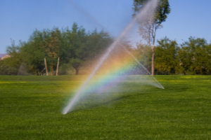 Lawn Irrigation - YardDoc - Tarrytown, TX - Tarrytown Lawn Care - Rainbow in lawn sprinkler system