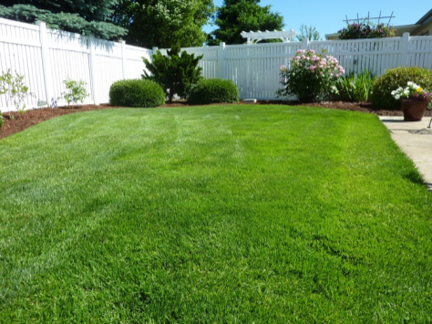 Lawn care Services - YardDoc - Travis City, TX - Plush green lawn with gardens