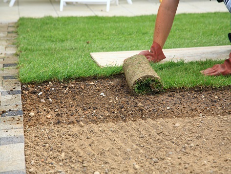 Sod Installation for new Lawn in Austin TX - YardDoc