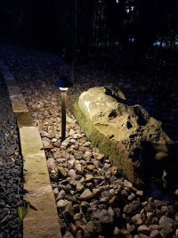 Landscape Lighting Ideas - YardDoc - Round Rock, TX - Border edge lighting
