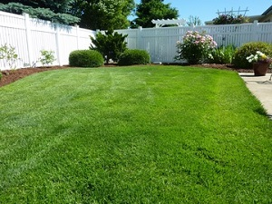 Lawn Fertilizer Service - YardDoc - Austin, TX - Green lawn with white fence and landscape design 300