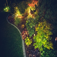 Landscaper Lighting Ideas from YardDoc