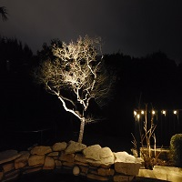 Landscape Lighting Service - Austin, TX - YardDoc