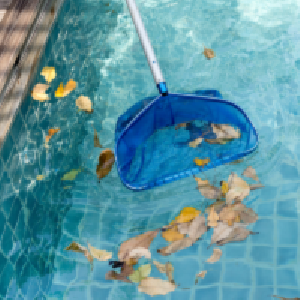 Swimming Pool FAQ - Georgetown, TX - Cleaning Leaves from Pool - YardDoc